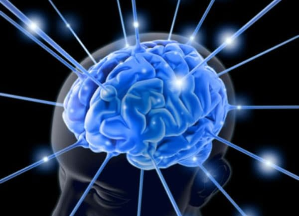 Learn How To Keep Your Brain Active